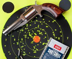 Birdshot target